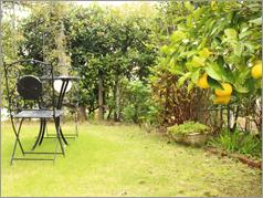 ガーデン・庭