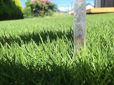 手順2.芝の高さを決める