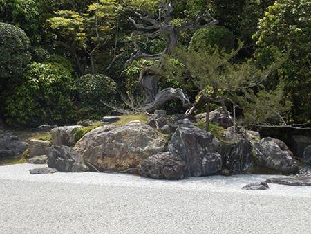 相木石(亀甲石)